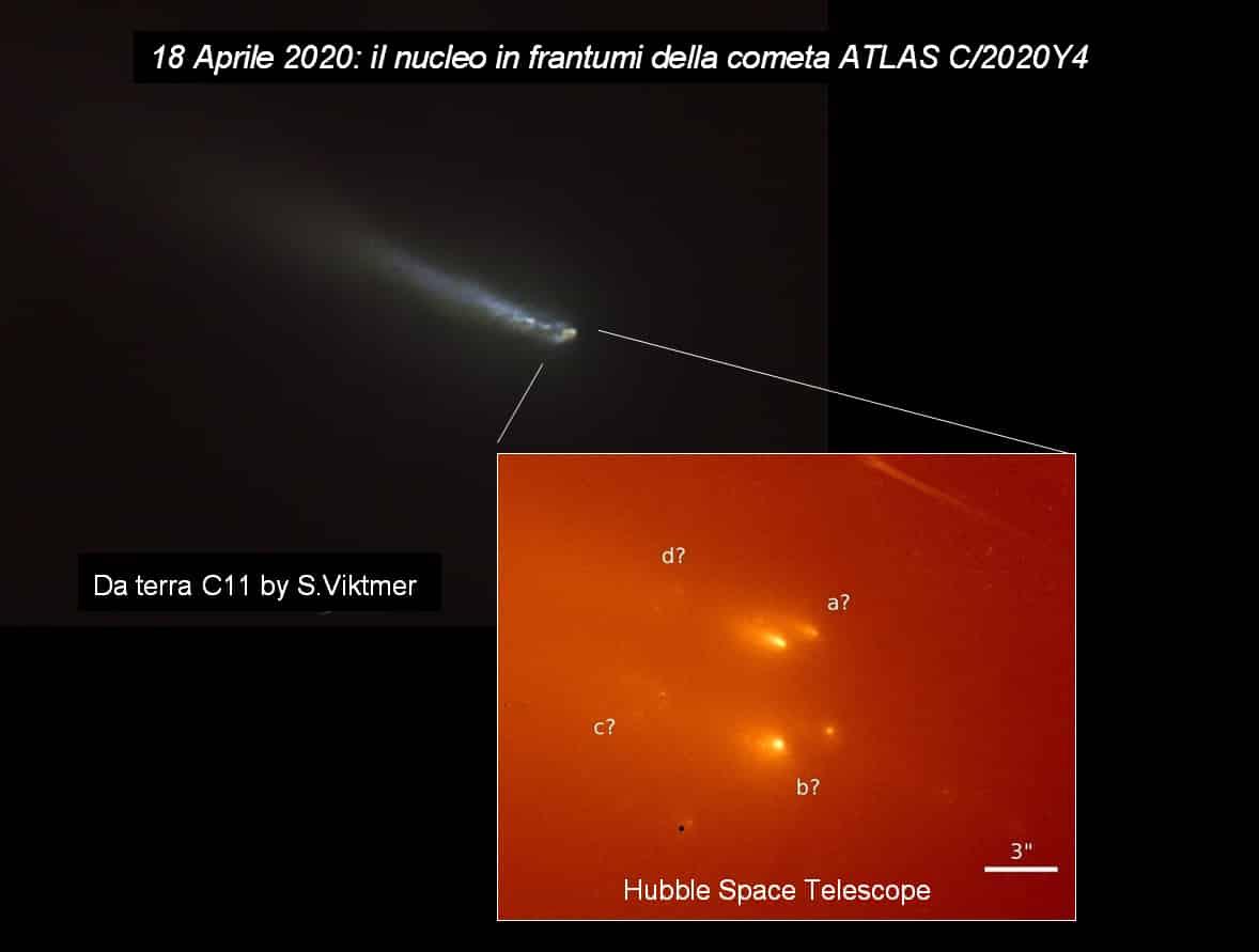"""Cometa Atlas """"in frantumi"""". Cometa SWAN C-2020 F8 """"alle porte""""!"""